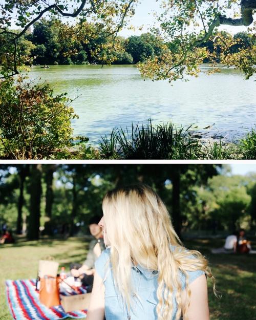 honey-central-park